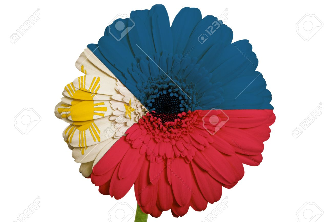 How To Send Flowers To Philippines Vibrant Atlas